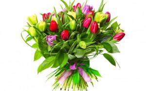 Papel-de-Parede-grande-buque-com-lindas-tulipas-36151