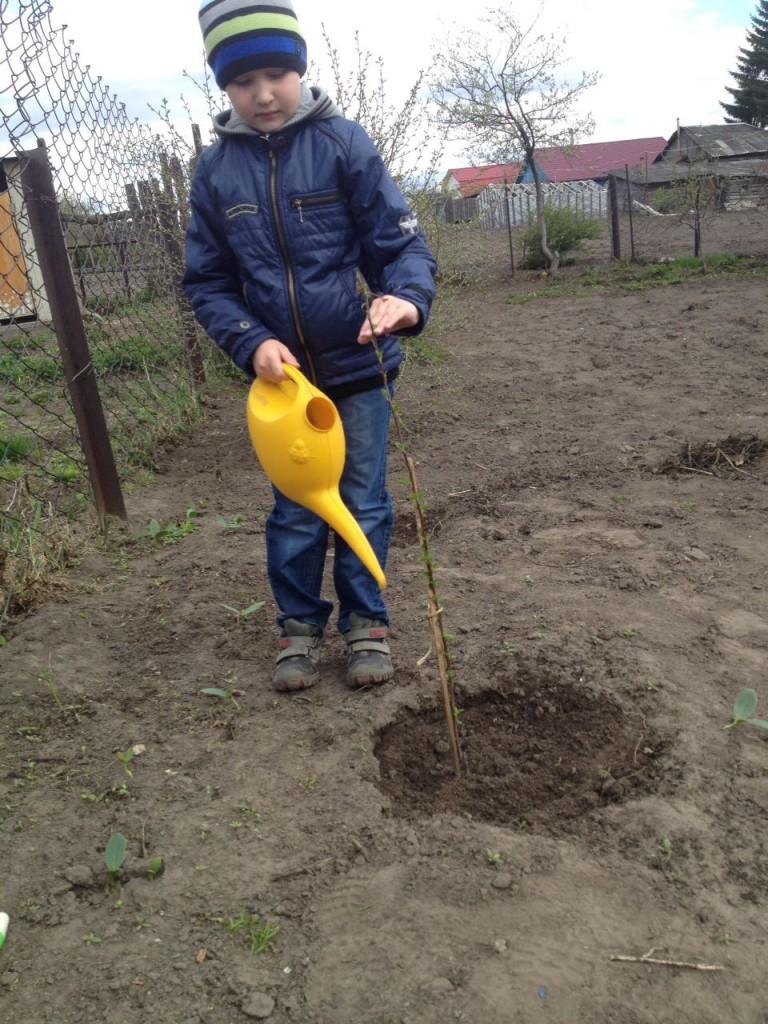 Федотова 2